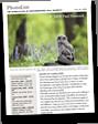 PhotoList Newsletter